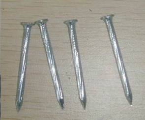 Hot Sale High Quanlity Spiral Galvanized Steel Nails