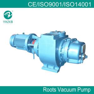 Roots Vacuum Pump pictures & photos
