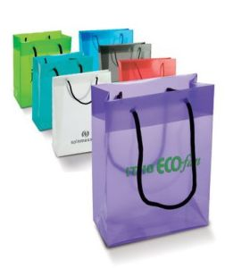PVC Printed String Handle Bags for Shopping (FLS-8041) pictures & photos