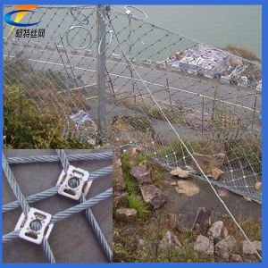 Factory Direct Sale Sns Slope Protection Mesh pictures & photos