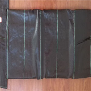 China Best Agricultural Black Polypropylene Woven Biodegradable Ground Anti Weed Control Fabric Manufacturer pictures & photos