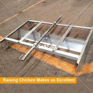 Automatic Manure Removing System of Poultry Cage Equipment pictures & photos