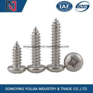 Pan Head Phillips Cross Recessed Self Tapping Screws with China Factory pictures & photos