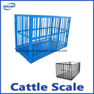 Poultry Scale Animal Weighing Scale pictures & photos