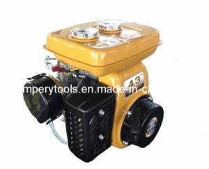 Petrol Kerosene Robin Engine (EY20-K)