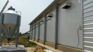 Prefabricated Steel House Design Poultry Farming House for Broiler pictures & photos