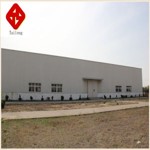 Made in China Steel Structure Workshop pictures & photos