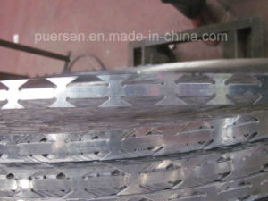 High Quality Types of Concertina Razor Wire, Galvanized Razor Wire pictures & photos