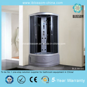 Household Satin Finished Aluminum Frame Shower Steam Cabin (BLS-9813G) pictures & photos