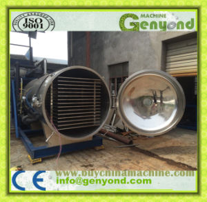 Vacuum Freeze Dryer for Food Industry pictures & photos