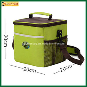 Hot Sale Insulated Picnic Bag Thermal Cooler Bag (TP-CB372) pictures & photos