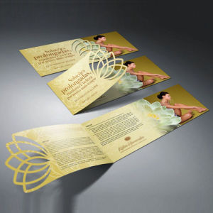 Custom Softcover Book Printing, Manual, Brochures, Instruction Booklet pictures & photos