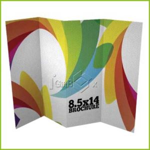 Wholesale Full Color Printed Advertising Brochure pictures & photos