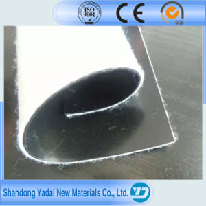 Woven Geotextile HDPE Geomembrane for Fish Farm Pond Lake pictures & photos