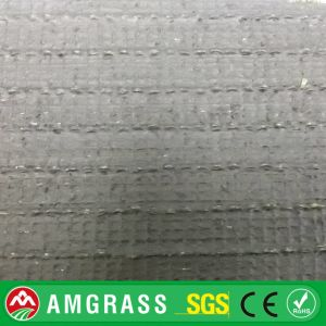 Soccer Carpet and Competitive Price Synthetic Grass pictures & photos