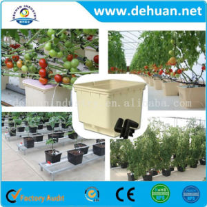 11 Liter Hydroponic Planting Pots Dutch Bucket pictures & photos