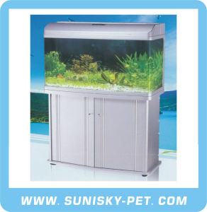 Glass Fish Tank (AR-F Series) pictures & photos