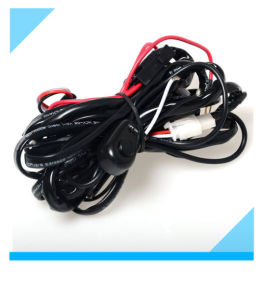 China Factory Custom Auto Lamp Wire Harness for Car Light pictures & photos
