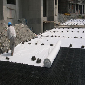 Needle Punch Nonwoven Polyester Geotechnical Fabric pictures & photos
