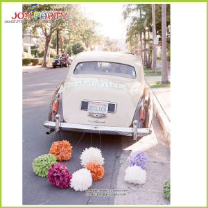 Tissue Paper POM Poms for Wedding Car Decoration pictures & photos