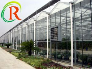 RS--Plastic with SGS Certificate for Greenhouse and Industry pictures & photos