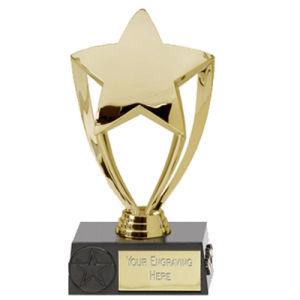 Newly Developed Awards Trophy / Medal