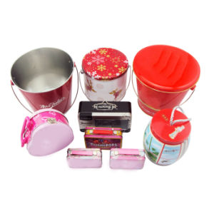 Metal/Tin Box/Can with Handle (DL-RT-0107)