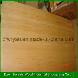 Pine Veneer Plywood Decorative Timber Plywood pictures & photos