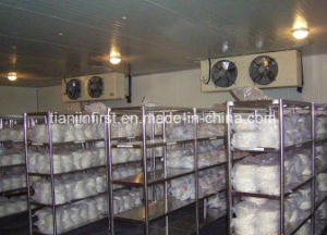 Refrigeration Freezing Room, Cold Storage Blast Freezer Cold Room pictures & photos