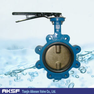 Bronze Disc Butterfly Valve in Iron Body with Handle pictures & photos