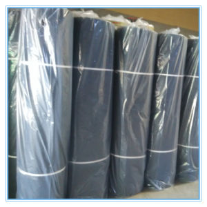 Plastic Wire Mesh (low price high quality) pictures & photos