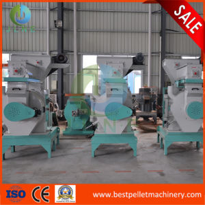 Automatic Industrial Machines for Make Pellet Wood pictures & photos