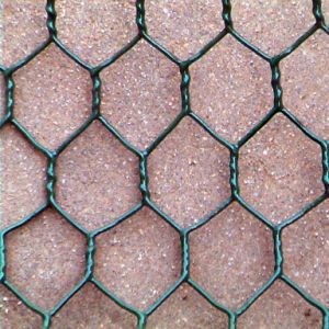 PVC Coated Hot Dipped Galvanized Hexagonal Wire Mesh (Factory & Exporter) pictures & photos