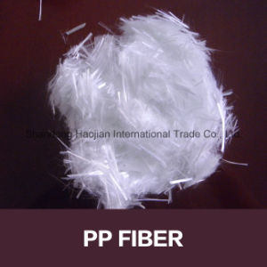 Wall Coat Additive PP Fiber Monofilament Fibra pictures & photos