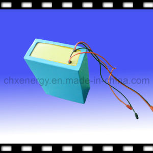 Rechargeable LiFePO4 Battery Pack for Electric Bicycle/Wheel Chair/Buggy 36V 15ah