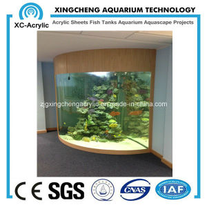 Quarter Acrylic Fish Tank/Aquarium pictures & photos