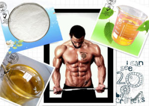 Memory and Learning Enhancer Prl-8-53 CAS: 51352-87-5 White Raw Powder pictures & photos