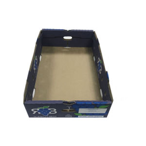 Custom Made Strong Corrugated Paper Plain White Fruit Packaging Box pictures & photos