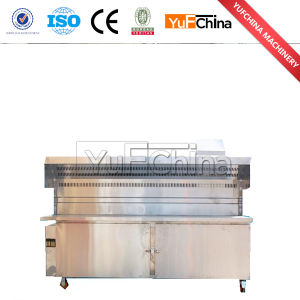 Charcoal Barbecue Grill / Electric Barbecue Grill pictures & photos