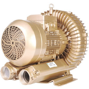 Ce Certified 10HP Vacuum Pump in CNC Router with Ie3 Motor pictures & photos