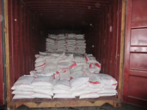 TCP White Powder/ DCP Price/ Mcp Granular/ Feed Phosphate Manufacturer/Factory pictures & photos