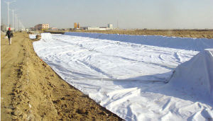 Non-Woven Geotextile with Mass Area Weight 400g pictures & photos