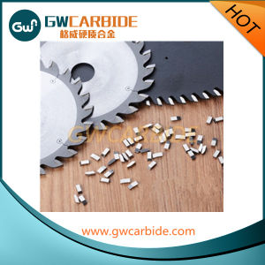 Tungsten Carbide Saw Tips for Woodworking pictures & photos