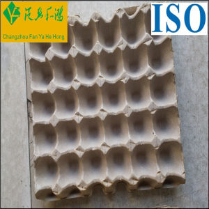 Molded Pulp Packagage Sugarcane Pulp Moulded Products pictures & photos
