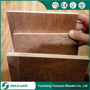 High Quality 15mm Bintangor Commercial Plywood pictures & photos