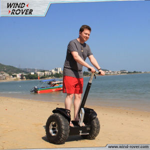 Wind Rover Adult Mobility Scooter Snow Scooter pictures & photos