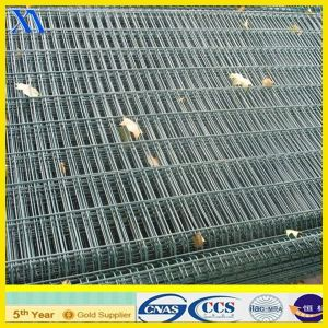 Electro Galvanized Welded Wire Mesh Panels for Building (XA-WP8) pictures & photos