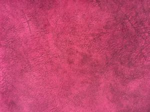 Polyester Warp Knitting Printed Velvet (PR037) pictures & photos