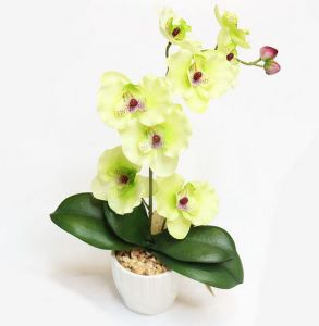 Wholesale Artificial Flower Orchid in Vase pictures & photos