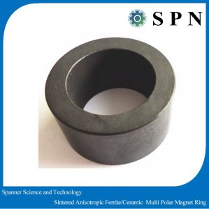 Ferrite Permanent Magnet Multipole Rings pictures & photos